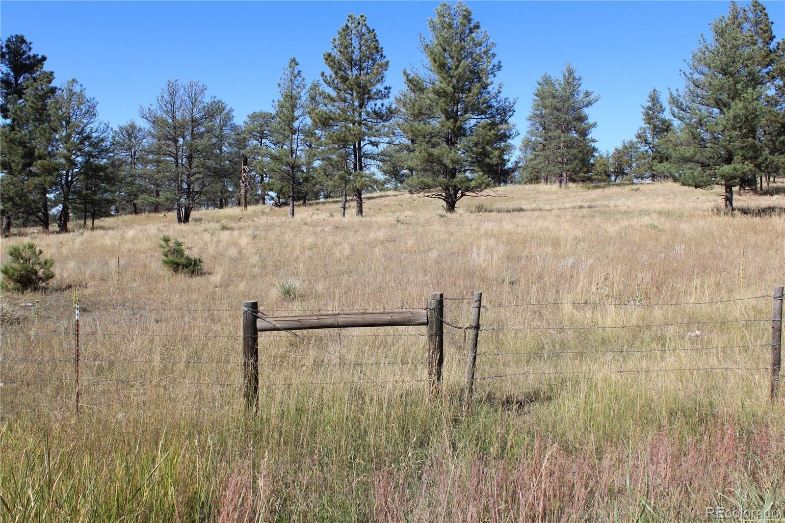 MLS# 2877174 - 1 - Cattle Circle, Kiowa, CO 80117
