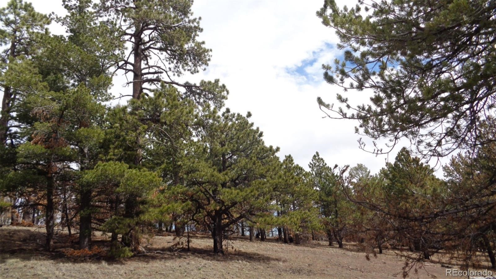MLS# 2982549 - 1 - 2117 Packer Place, Fort Garland, CO 81133