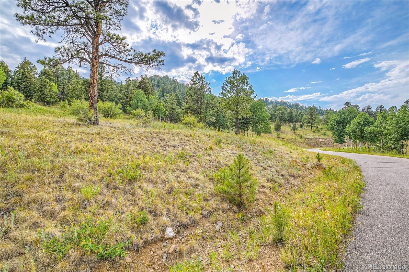 MLS# 3136640 - 1 - 14515 Reserve Road, Pine, CO 80470
