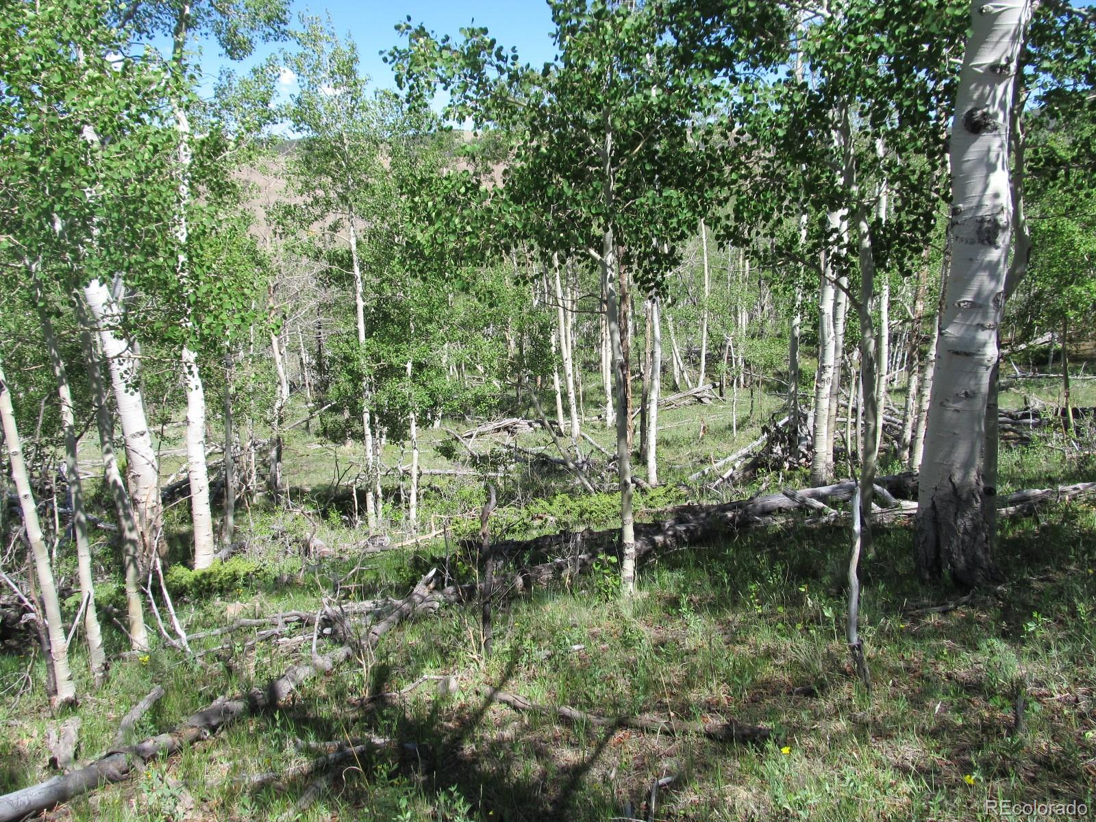 MLS# 3297013 - 1 - Kasihta Trail, Hartsel, CO 80449