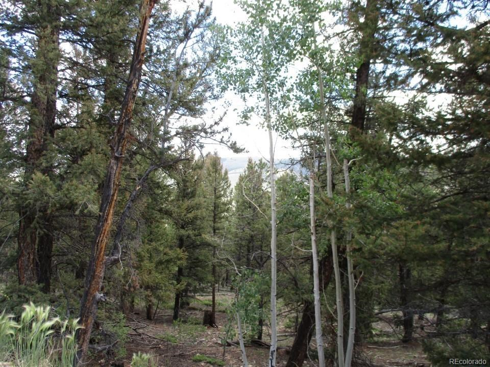 MLS# 5164513 - 1 -   Redhill Forest, Fairplay, CO 80440