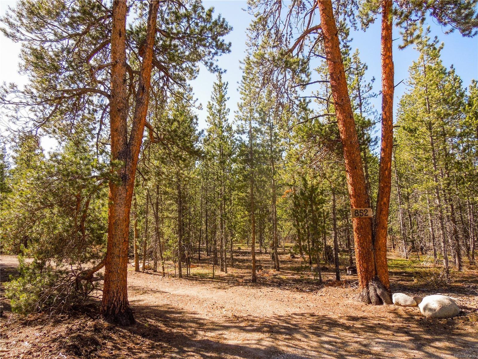 MLS# 8179364 - 1 - 852 Birch Drive, Twin Lakes, CO 81251