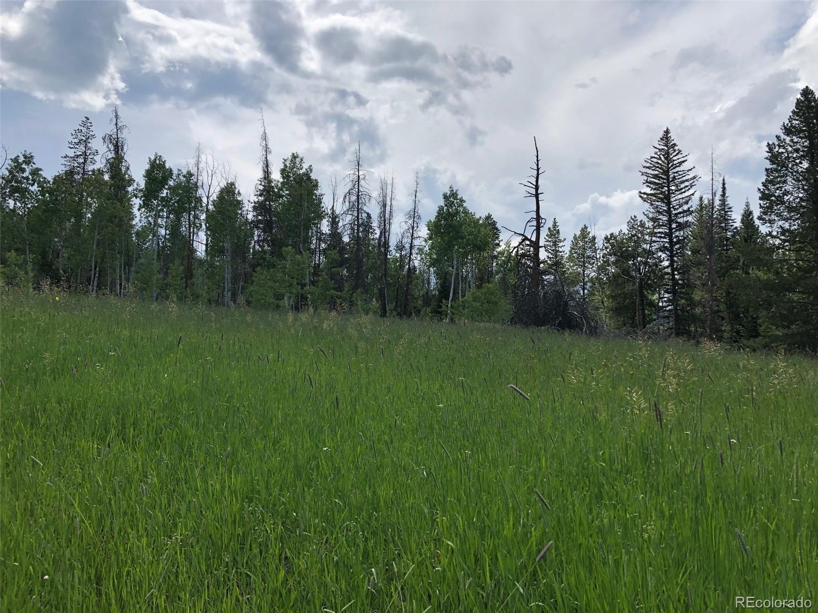 MLS# 8768882 - 1 - 01 Halter Trail, Oak Creek, CO 80467