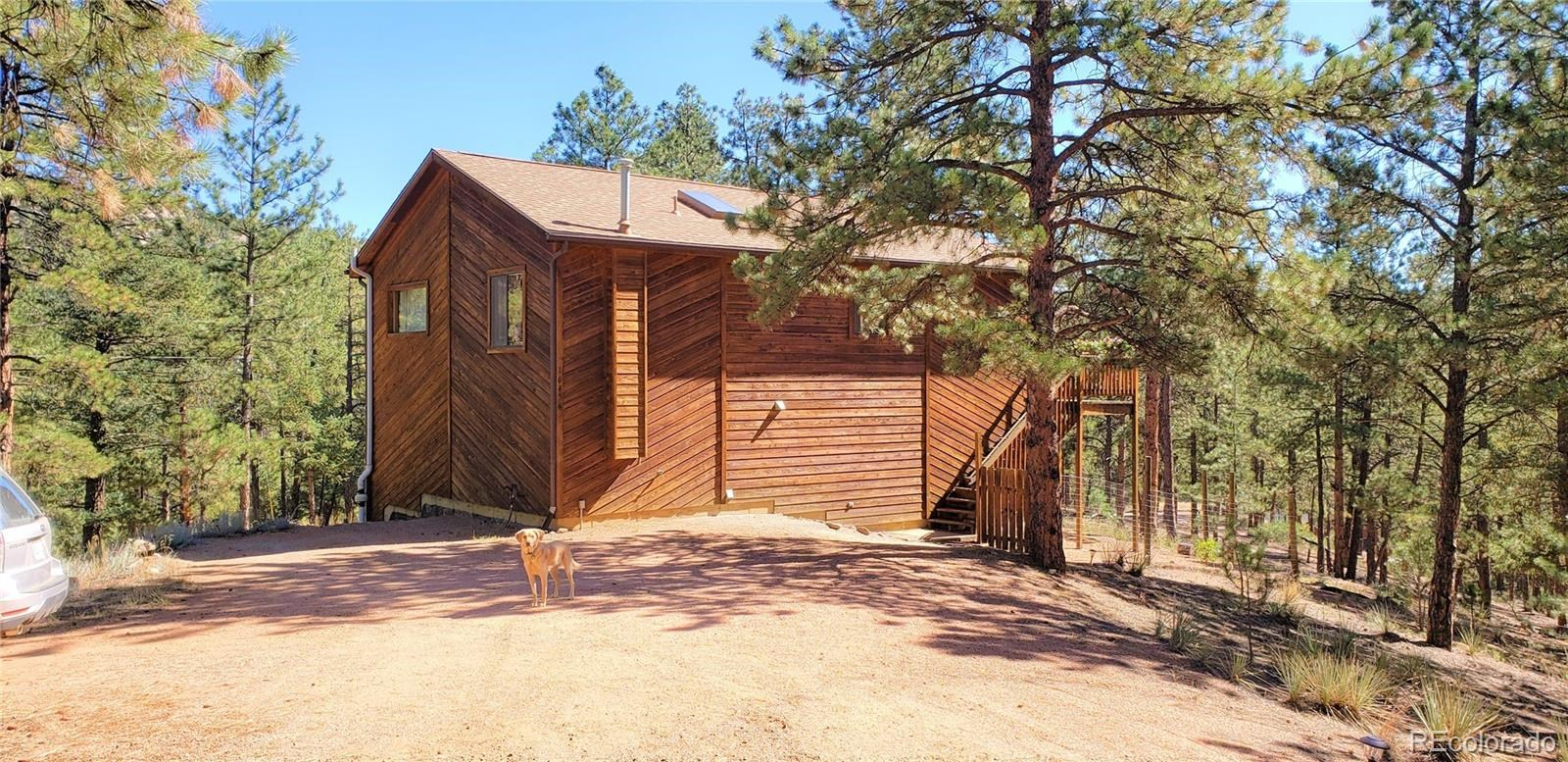 MLS# 9494627 - 1 - 16456 Ouray Road W , Pine, CO 80470