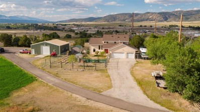 8425 County Road 144, Salida, CO 81201 - #: 1531354