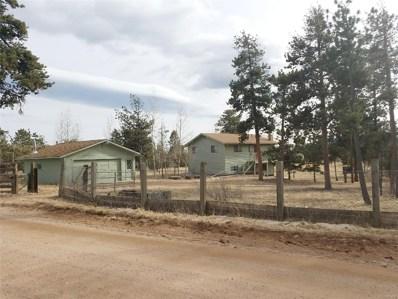 34856 Mohawk Trail, Pine, CO 80470 - #: 1614964