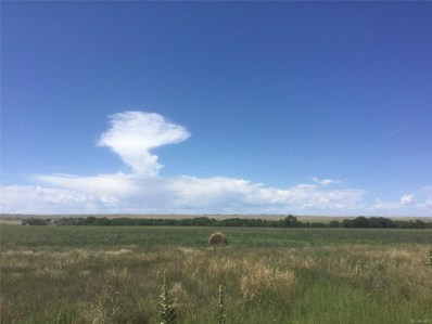 Southern 35 Acre Plot Kiowa Bennett, Bennett, CO 80102 - MLS#: 1623348