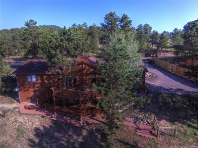 64 Pine Trail, Bailey, CO 80421 - MLS#: 1658093
