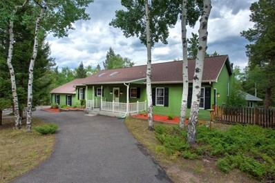 12743 S Wamblee Valley Road, Conifer, CO 80433 - MLS#: 1696510
