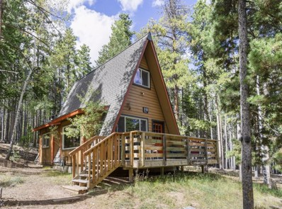 319 Deer Road, Evergreen, CO 80439 - #: 1726650