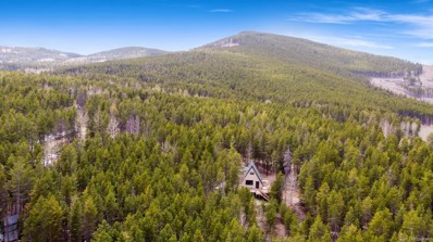 240 Deer Road, Evergreen, CO 80439 - #: 1793935