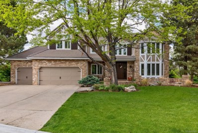 58 Falcon Hills Drive, Highlands Ranch, CO 80126 - #: 1800833