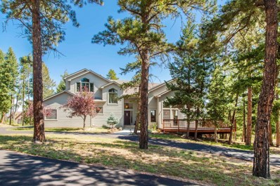 29433 Grayhawk Drive, Evergreen, CO 80439 - #: 1821646