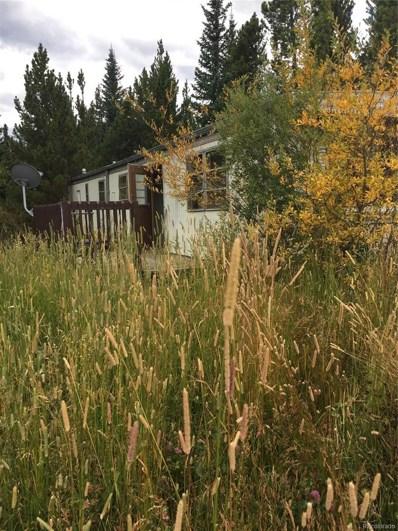 230 Little Creek Road, Idaho Springs, CO 80452 - MLS#: 1894773