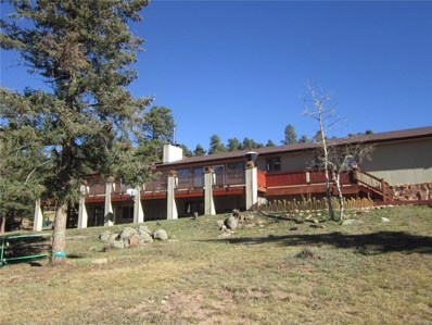8690 Grizzly Way, Evergreen, CO 80439 - #: 1939542