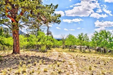 Ignacio, Como, CO 80456 - MLS#: 1941160