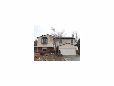 806 Park View Place, Castle Rock, CO 80104 - MLS#: 1947046