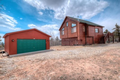 626 Ute Trail, Como, CO 80432 - MLS#: 1955229