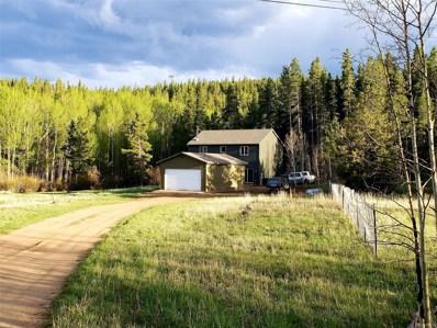 184 Glen Mawr Drive, Black Hawk, CO 80422 - #: 1958296