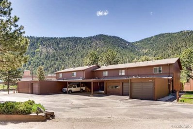 2825 Riverside Drive, Idaho Springs, CO 80452 - MLS#: 1968202