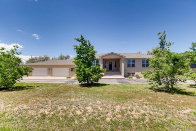 15301 Pless Drive, Brighton, CO 80601 - #: 2022310