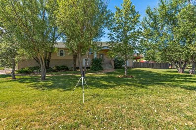 10427 Ammons Street, Westminster, CO 80021 - #: 2054649