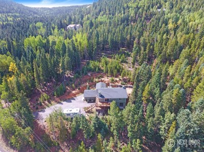 10389 Christopher Drive, Conifer, CO 80433 - #: 2107029
