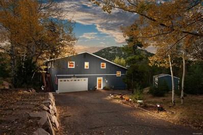 31231 Cree Drive, Evergreen, CO 80439 - #: 2108886