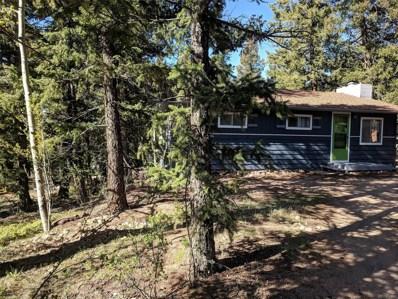 31002 Haldimand Drive, Conifer, CO 80433 - MLS#: 2147615