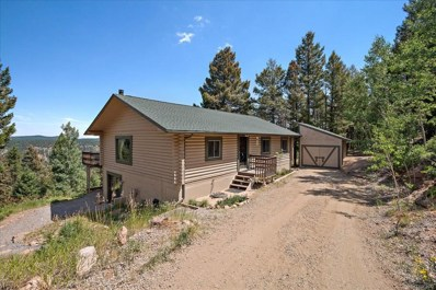 12256 Powhatan Trail, Conifer, CO 80433 - #: 2291436