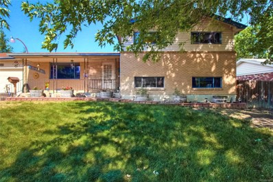 10788 Roseanna Drive, Northglenn, CO 80234 - MLS#: 2293257