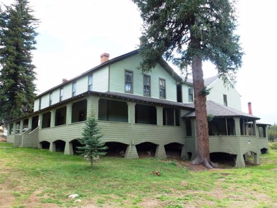 18051 County 126 Road, Pine, CO 80470 - #: 2333610