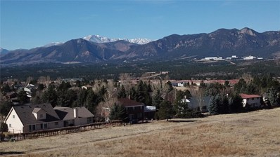 14345 Spyglass Hill Place, Colorado Springs, CO 80921 - MLS#: 2377724