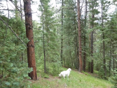 33855 Columbine Circle, Evergreen, CO 80439 - #: 2409863