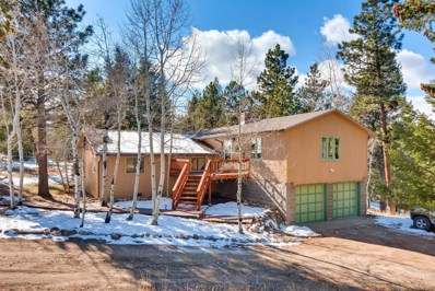 55 Ravenswood Court, Bailey, CO 80421 - #: 2415101