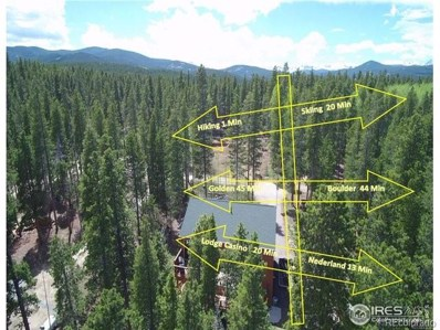 216 Severance Lodge Road, Black Hawk, CO 80422 - #: 2456709