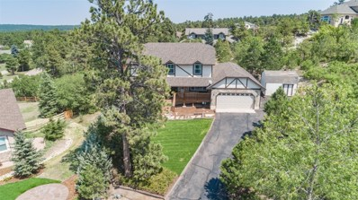 17585 Chipped Arrow Way, Monument, CO 80132 - MLS#: 2460451