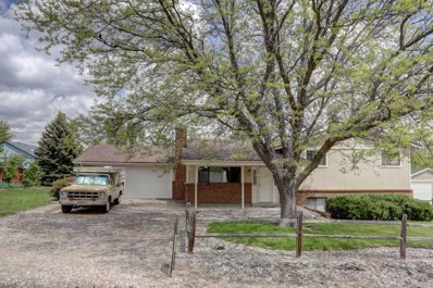 7758 S Dudley Street, Littleton, CO 80128 - #: 2463699