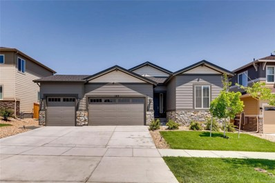 11819 Chipper Lane, Parker, CO 80134 - #: 2481687