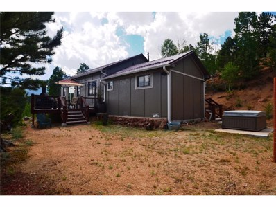 98 Lallie Road, Bailey, CO 80421 - MLS#: 2492718