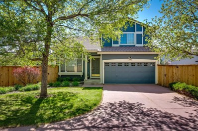 1436 Braewood Avenue, Highlands Ranch, CO 80129 - MLS#: 2494555