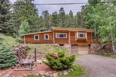 6847 S Brook Forest Road, Evergreen, CO 80439 - #: 2531378