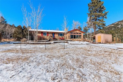 31517 Niakwa Road, Evergreen, CO 80439 - #: 2549833