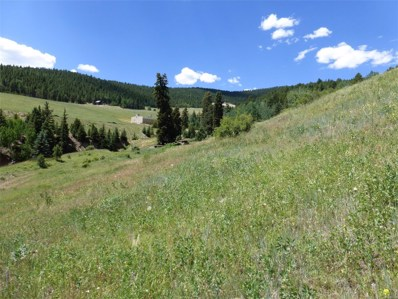 2 Wellington Mine Road, Central City, CO 80427 - #: 2636105