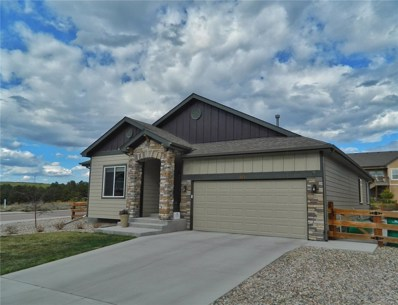 743 Tailings Drive, Monument, CO 80132 - MLS#: 2838478