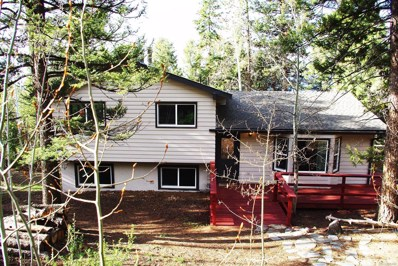 30572 Kings Valley East, Conifer, CO 80433 - #: 2896100