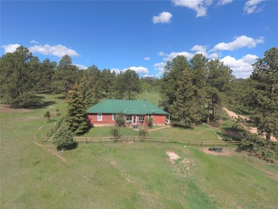412 Pinon Road, Bailey, CO 80421 - #: 2918767