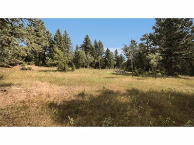 8800 S Blue Creek Road, Evergreen, CO 80439 - #: 2950761