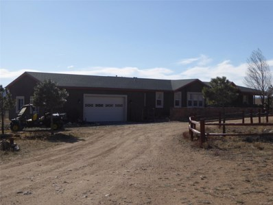 32206 County Road 361, Buena Vista, CO 81211 - MLS#: 3023748