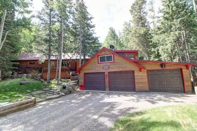 1671 Little Bear Creek Road, Idaho Springs, CO 80452 - MLS#: 3032815